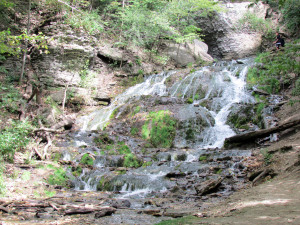 waterfall, Dunning Springs