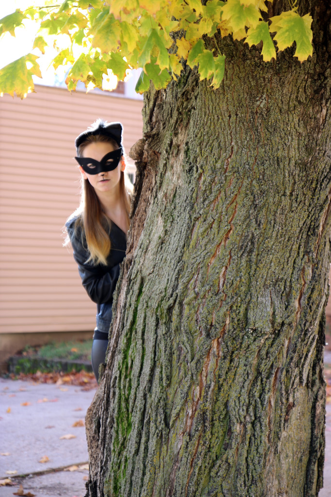 diy, cat woman Halloween costume