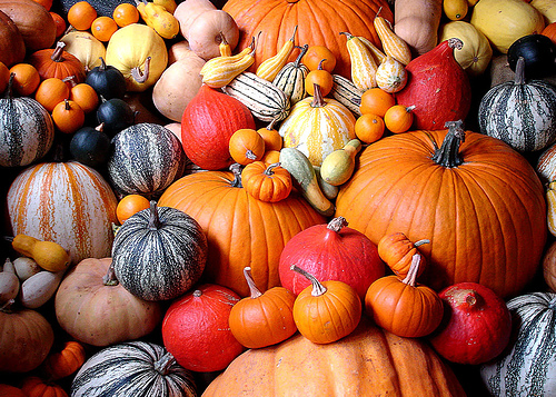 pumpkins, gourds, fall