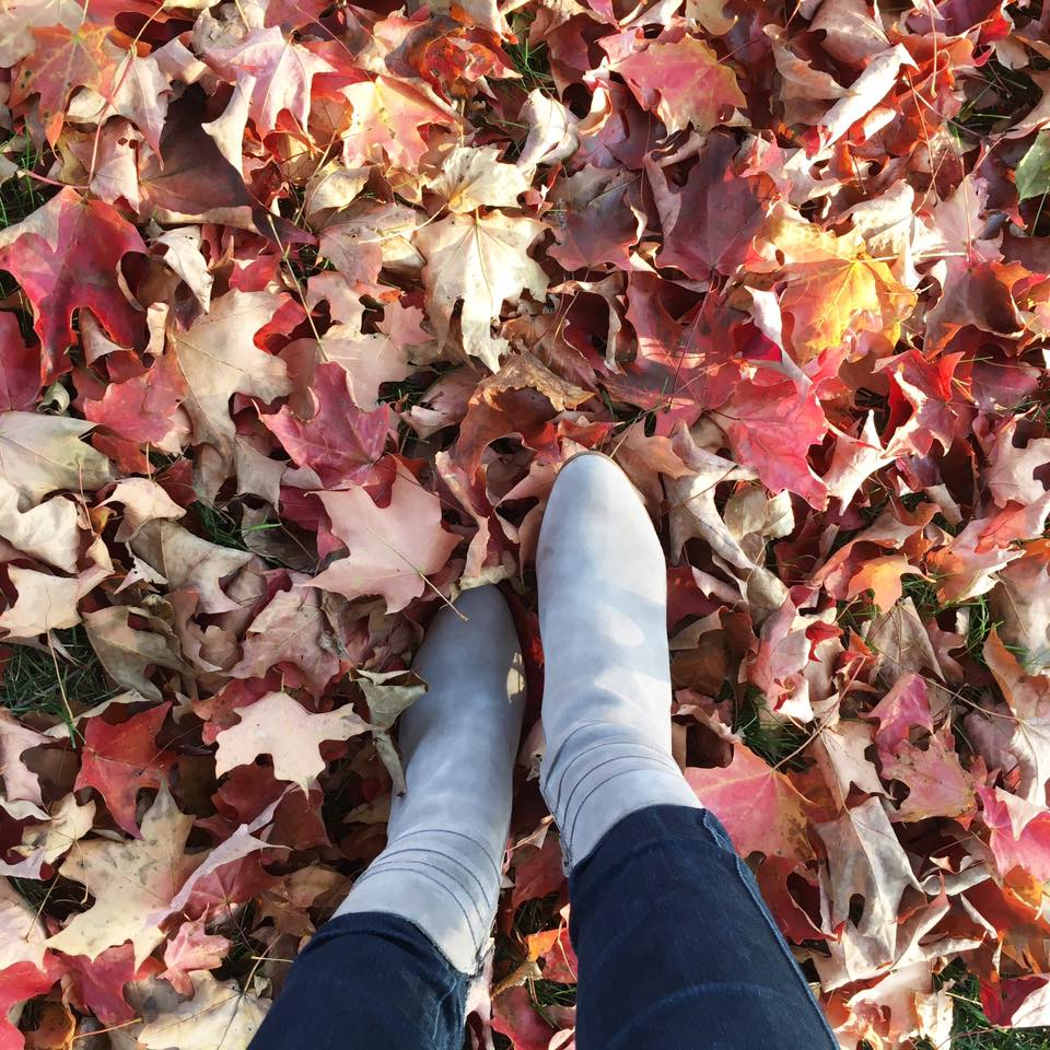 grey booties, Steve Madden booties, fall, red leaves