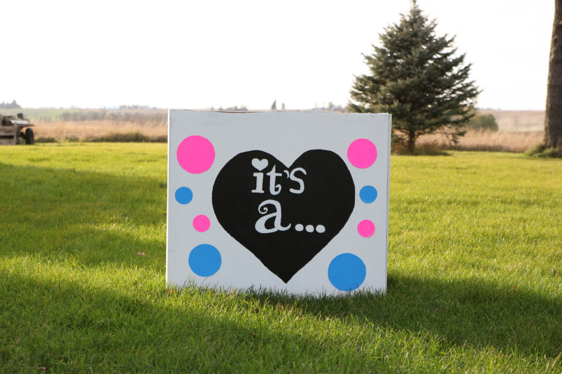 it's a, balloon reveal, gender reveal, gender reveal party, gender party, pink or blue, balloons, box of balloons
