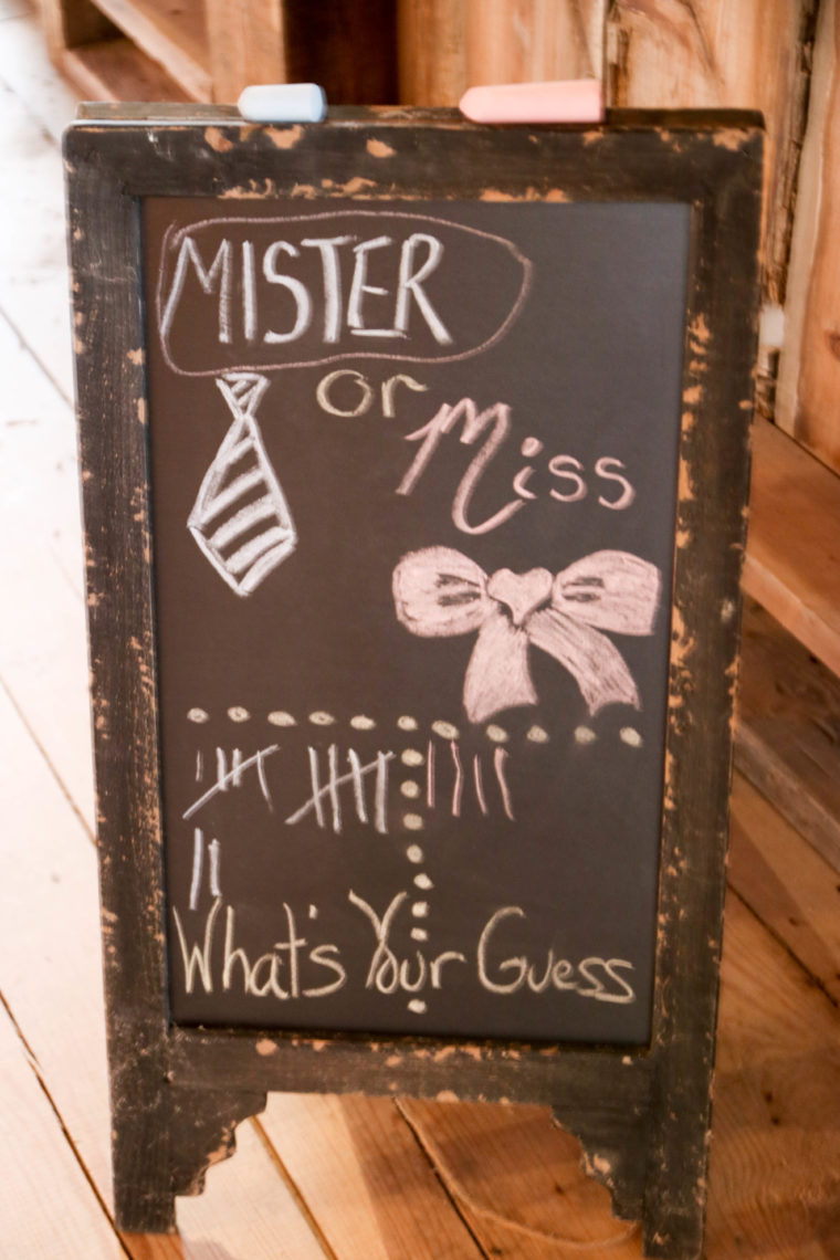 mister or miss, gender reveal, gender party, gender reveal party, boy or girl, pink or blue, it's a boy
