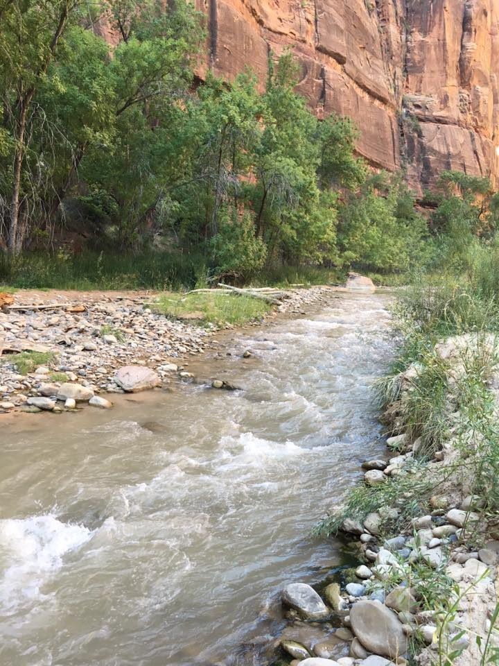 Virgin River, narrows, Temple of Sinawava, Zion National Park