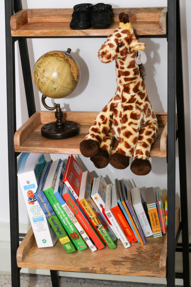 for the love of glitter, bookshelf. giraffe, globe
