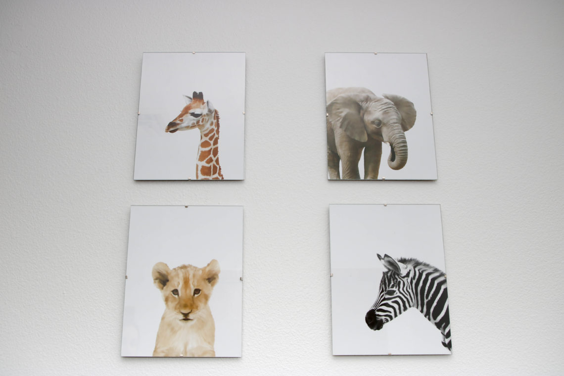 for the love of glitter, safari prints, safari nursery