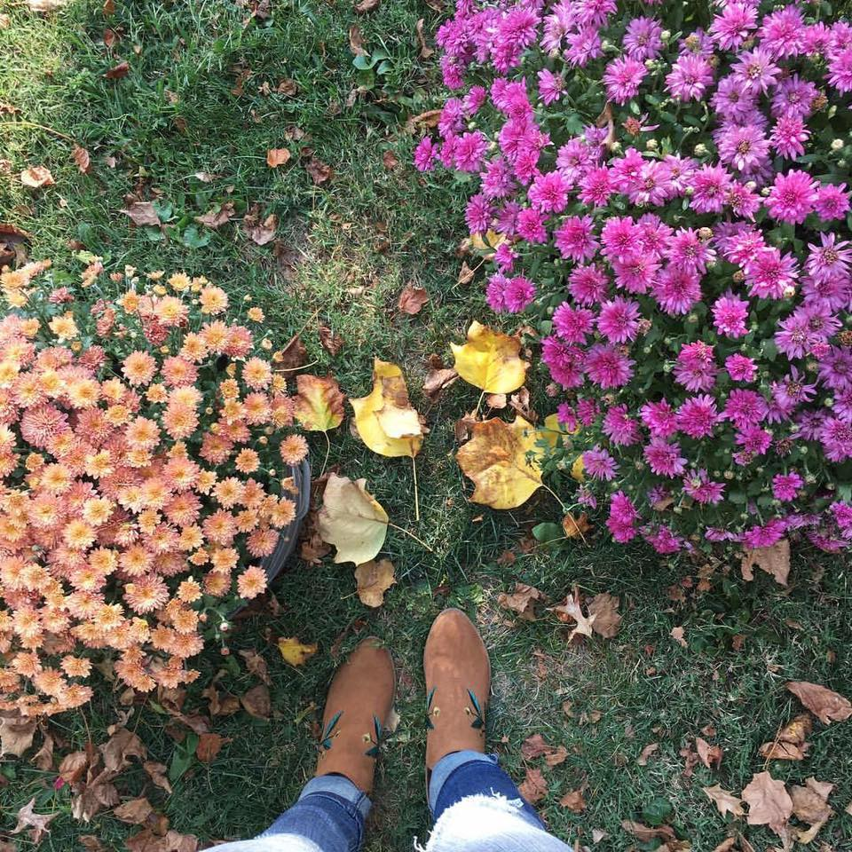 for the love of glitter, first day of fall, embroidered booties, mum flowers