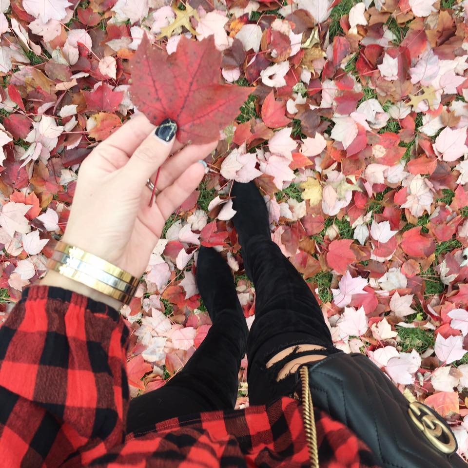 red leaves, fall style, Gucci bag